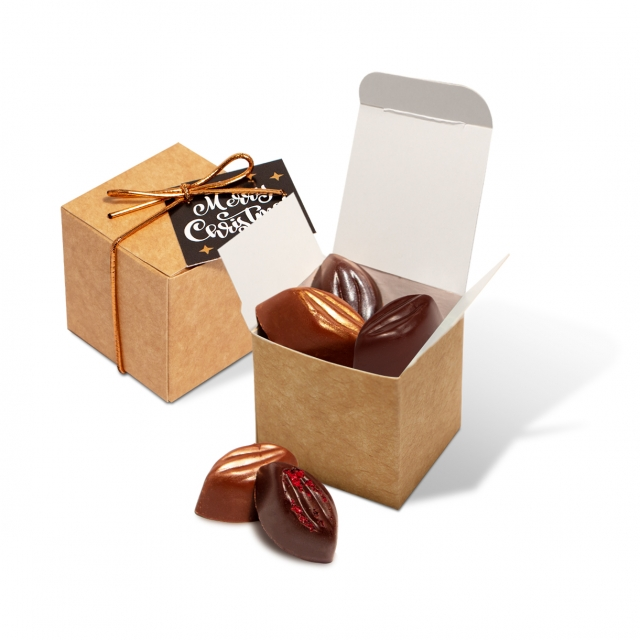 Winter Collection 2020 – Eco Kraft Cube – Cocoa Bean Truffles